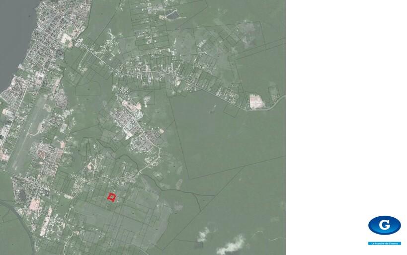 TERRAIN ST LAURENT DU MARONI 10 000 M² - ZONE AGRICOLE