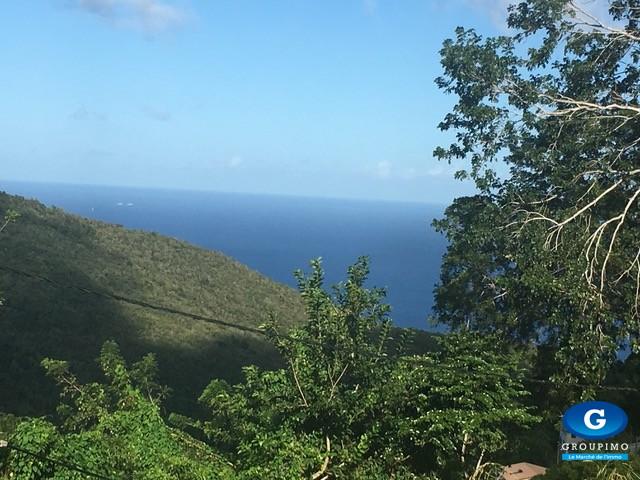 Terrain sis Morne Bigot Cocotier Les Anses d'Arlets