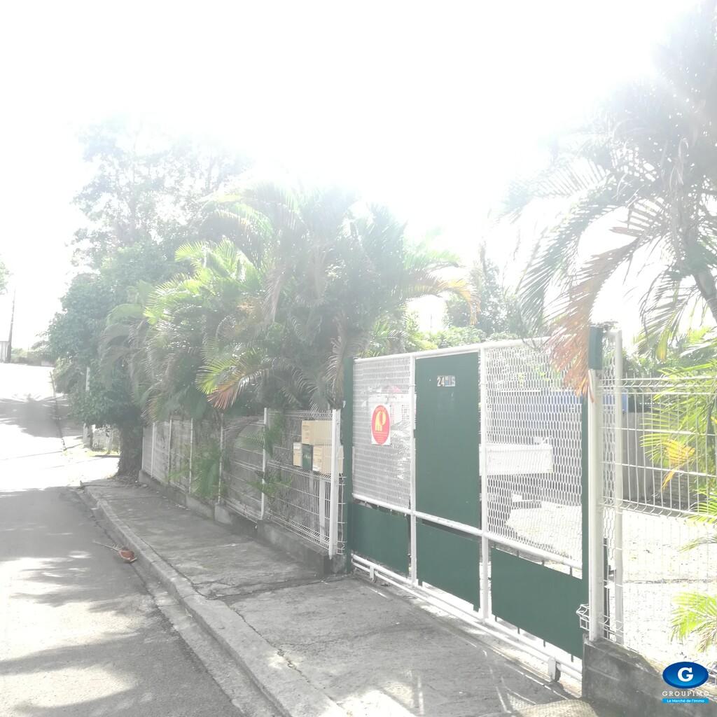 Propriété : Bureaux professionnels - Maison - Studio duplex - Didier - Fort de France - 2460 m²