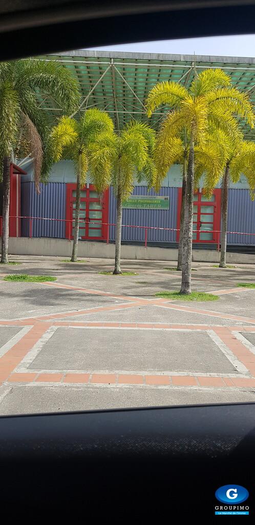 Appartement - Jamaica - Lauricisque - 4 pièces
